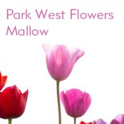 park-west-flowers